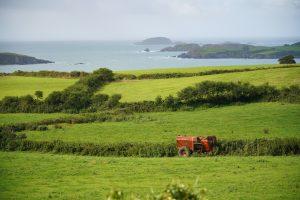 County Cork seaside landscape